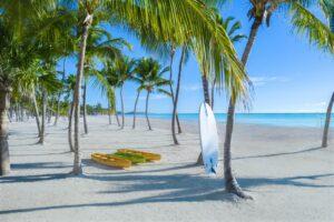 Hyatt-Zilara-Cap-Cana-Beach-2-min